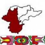 Borsod Megyei Szervezet csoport logója